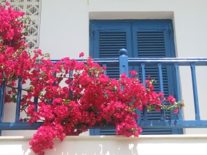 Breath and Relax...Bougainvilleas and Sea Views